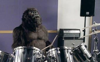 Cadbury's gorilla