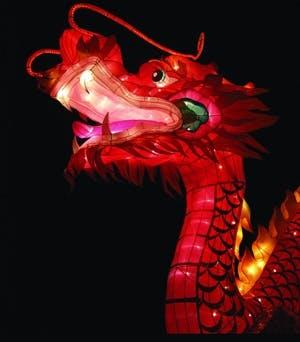 /r/u/k/Dragon.jpg