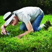 /e/k/m/Gardener.jpg