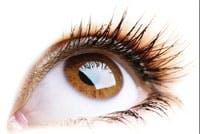 /j/p/d/eye.jpg