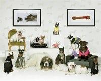 /k/v/y/new_breed_of_ads.jpg