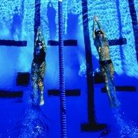 /q/i/j/Swimming.jpg