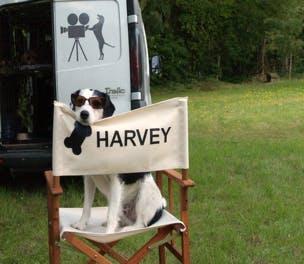 Harvey Thinkbox