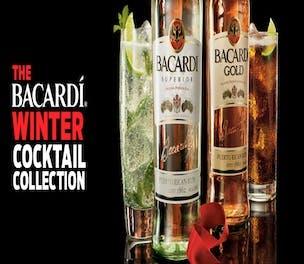 BacardiBottles-Product-2013_304