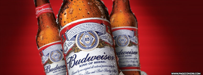 Budweiserbottles-Product-2013