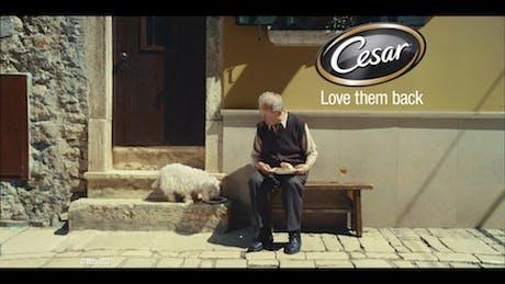 CesarHealth-Campaign-2013