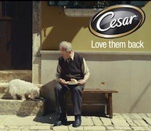 cesar-ad-2013-304