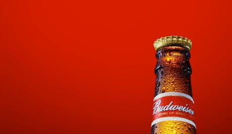 Budweiser-Campaign-2013_460