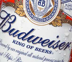 BudweiserLable-Product-2013_304
