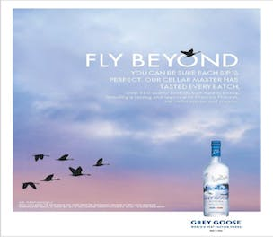 Grey Goose details plan to make brand more accessible