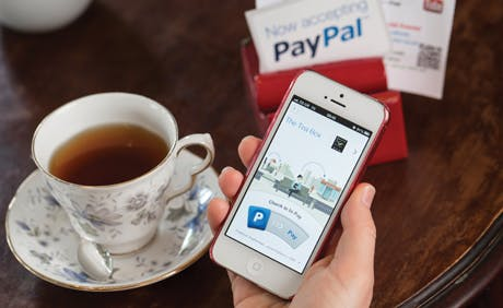 PayPal-2013-460