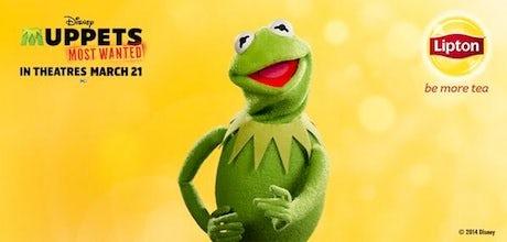 LiptonMuppets-Campaign-2014_460
