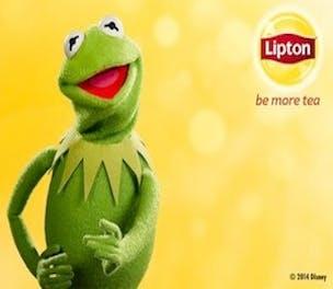 LiptonMuppets-Campaign-2014_304