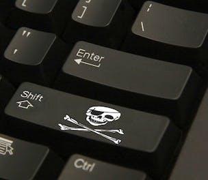 piracy-2014-304