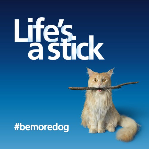 O2 Be More Dog campaign