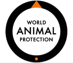worldanimalprotection-2014-304