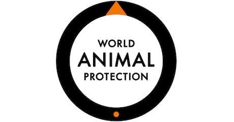 worldanimalprotection-2014-460