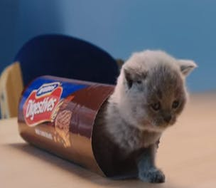 McVitiesBiscuits-Campaign-2014_304