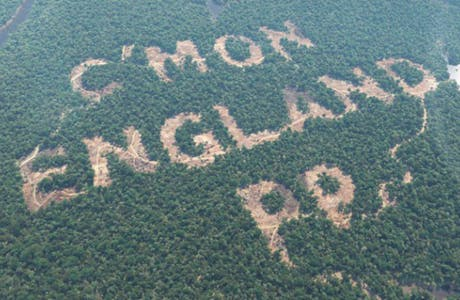 Paddy Power rainforest World Cup stunt