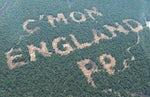 Paddy Power rainforest World Cup stunt