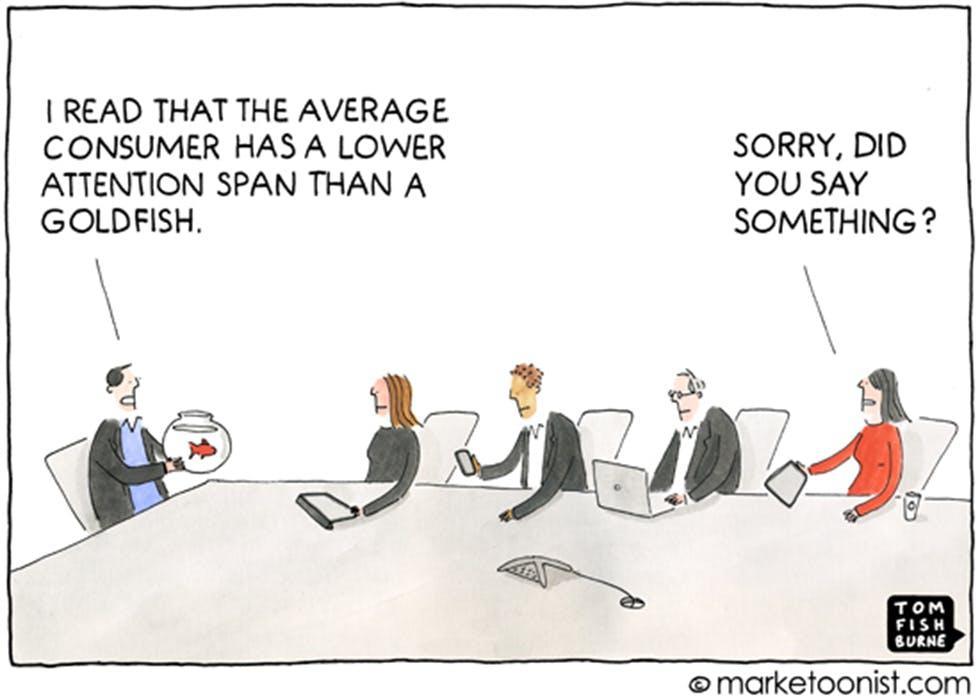 The average consumer