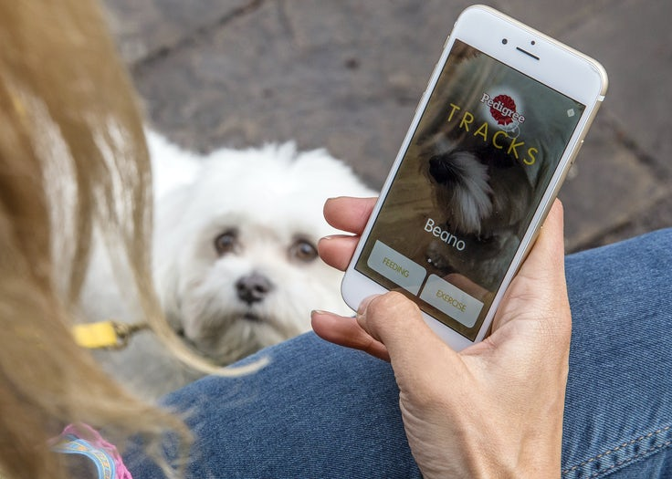Pedigree tackles canine obesity with doggy diet app