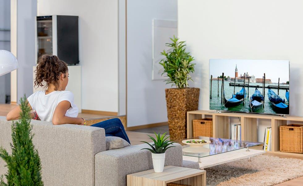TV programmatic