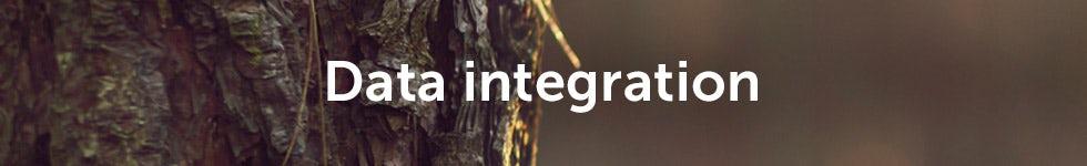 data-integration-big-1