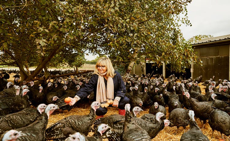 lidl-turkey