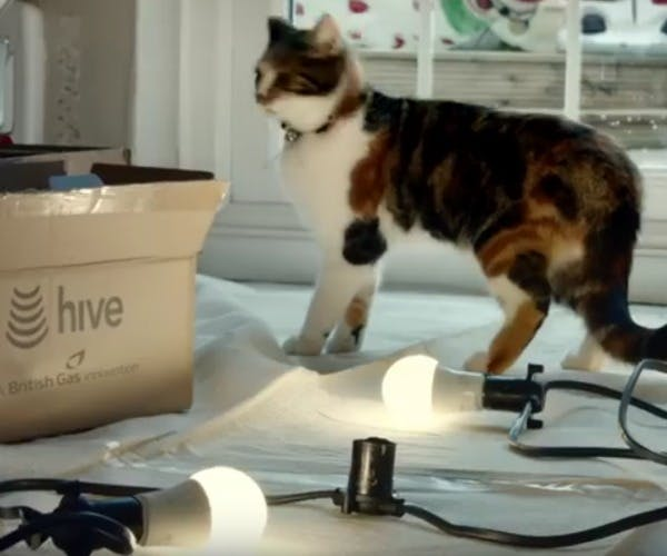 british gas hive christmas campaign