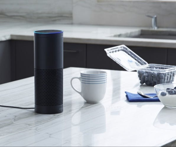 Amazon Echo voice search