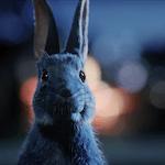 O2 Follow the Rabbit marketing campaign