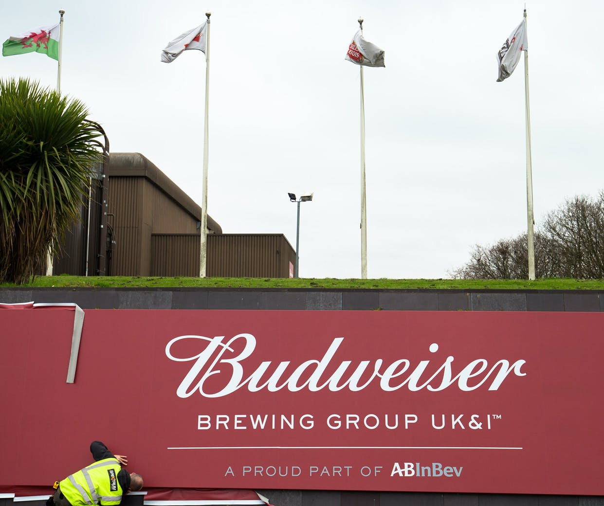 budweiser brewing