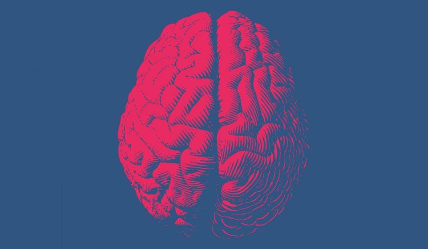 Marketing brain